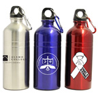 20 oz Stainless Sports Water Bottle W/ Carabiner